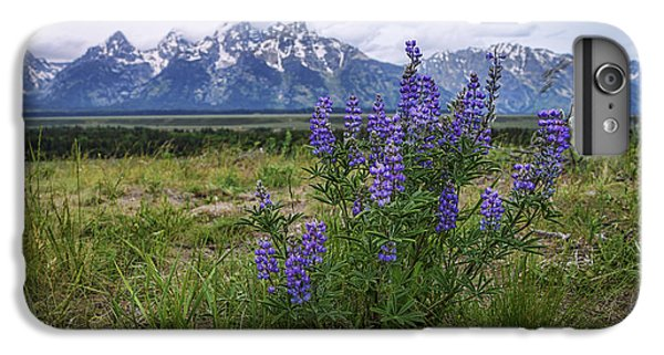 Mountain Sunset iPhone 6 Plus Case - Lupine Beauty by Chad Dutson