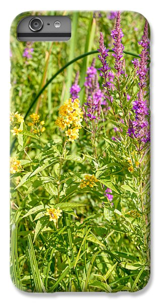 Lysimachia iPhone 6 Plus Cases | Fine Art America