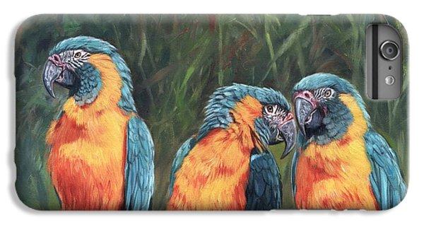Macaws IPhone 6 Plus Case