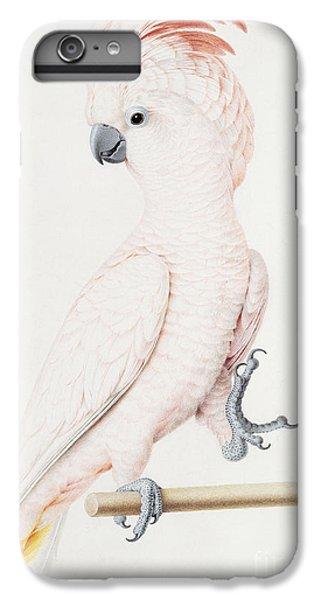 Major Mitchell's Cockatoo IPhone 6 Plus Case by Nicolas Robert
