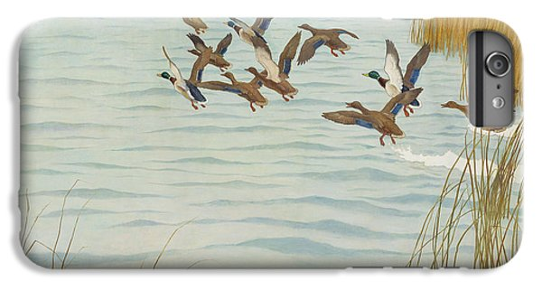 Mallards In Autumn IPhone 6 Plus Case by Newell Convers Wyeth