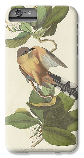 Mangrove Cuckoo IPhone 6 Plus Case by Dreyer Wildlife Print Collections