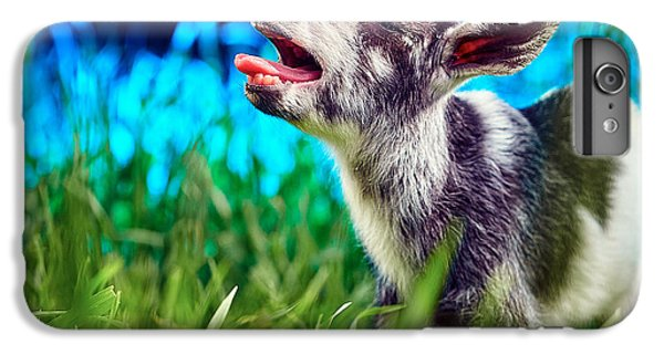 Baby Goat Kid Singing IPhone 6 Plus Case by TC Morgan