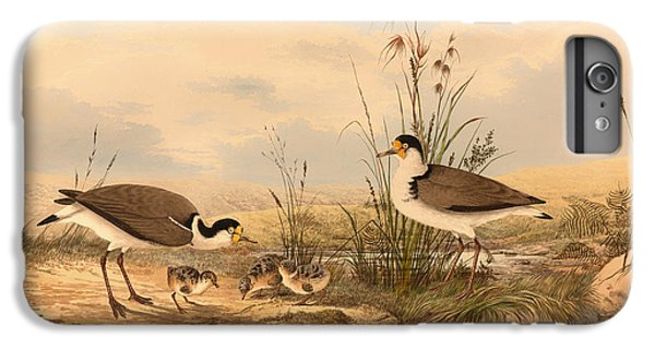 Masked Lapwing IPhone 6 Plus Case by Mountain Dreams