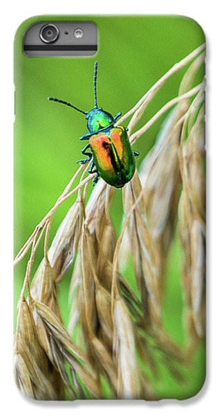 IPhone 6 Plus Case featuring the photograph Mini Metallic Magnificence  by Bill Pevlor