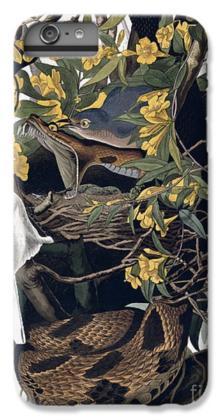 Mocking Birds And Rattlesnake IPhone 6 Plus Case by John James Audubon