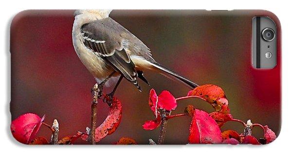 Mockingbird iPhone 6 Plus Case - Mockingbird On Red by William Jobes