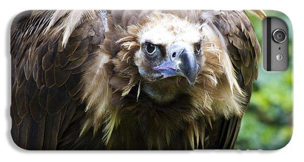 Monk Vulture 3 IPhone 6 Plus Case by Heiko Koehrer-Wagner