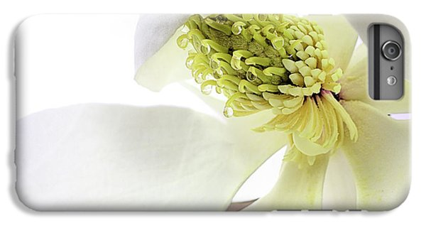 IPhone 6 Plus Case featuring the photograph Morning Dew Magnolia by JC Findley