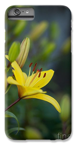 Lily iPhone 6 Plus Case - Morning Lily by Mike Reid