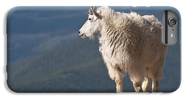 IPhone 6 Plus Case featuring the photograph Mountain Goat by Gary Lengyel