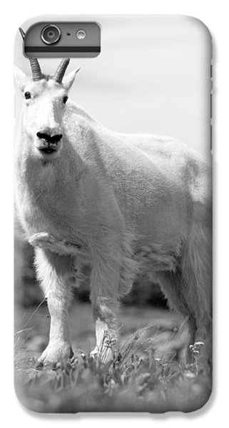 Mountain Goat IPhone 6 Plus Case by Sebastian Musial
