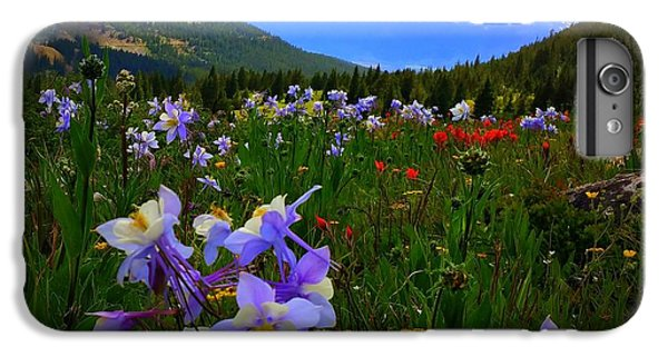 IPhone 6 Plus Case featuring the photograph Mountain Wildflowers by Karen Shackles