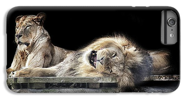 Lion Head iPhone 6 Plus Case - Napping by Martin Newman