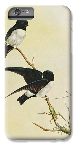 Nepal House Martin IPhone 6 Plus Case by John Gould