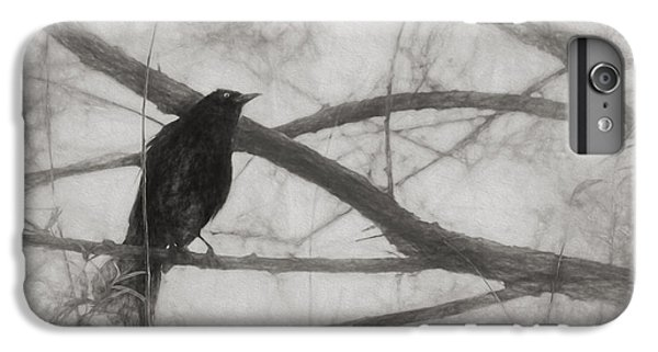 Nevermore IPhone 6 Plus Case by Melinda Wolverson