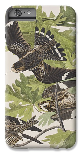 Night Hawk IPhone 6 Plus Case by John James Audubon