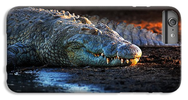 Nile Crocodile On Riverbank-1 IPhone 6 Plus Case by Johan Swanepoel