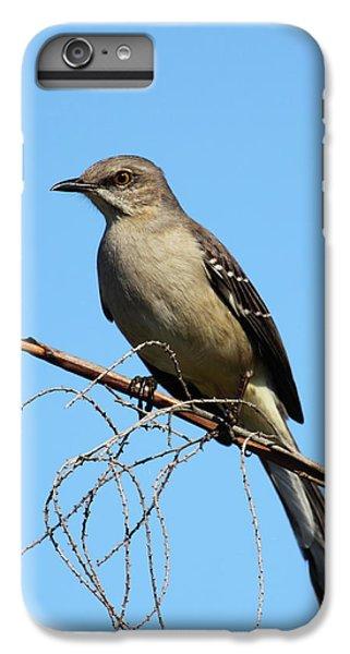 Mockingbird iPhone 6 Plus Case - Northern Mockingbird by Bruce J Robinson