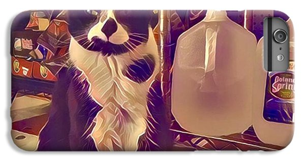 Nyc Bodega Cat IPhone 6 Plus Case