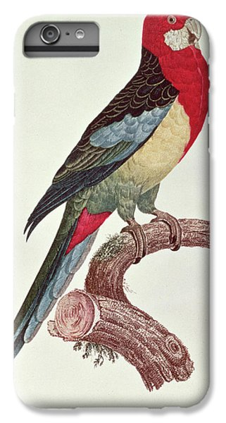 Omnicolored Parakeet IPhone 6 Plus Case