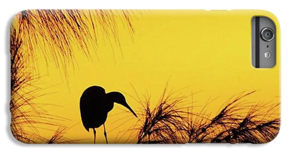 One Of A Series Taken At Mahoe Bay IPhone 6 Plus Case