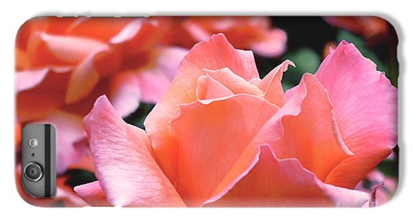 Orange-pink Roses  IPhone 6 Plus Case by Rona Black