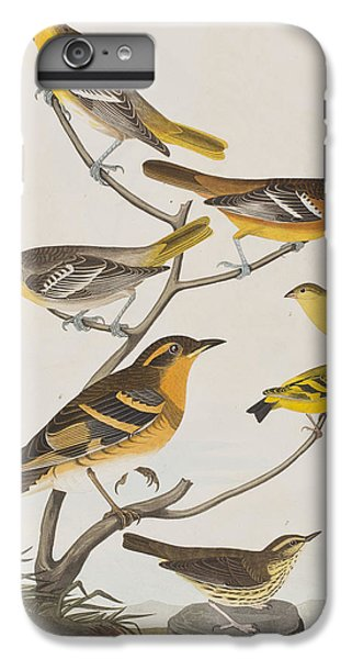 Orioles Thrushes And Goldfinches IPhone 6 Plus Case