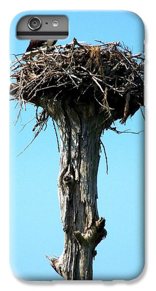Osprey Point IPhone 6 Plus Case by Karen Wiles