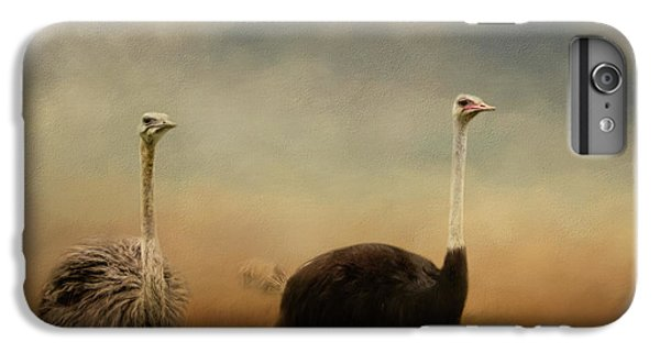 Ostrich Couple IPhone 6 Plus Case