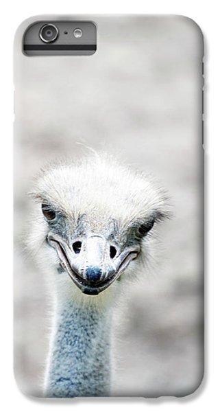 Ostrich IPhone 6 Plus Case by Lauren Mancke