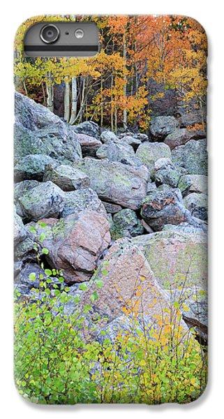Painted Rocks IPhone 6 Plus Case