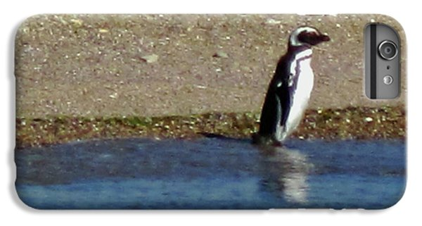 Penguin On The Beach IPhone 6 Plus Case by Sandy Taylor
