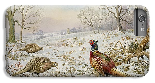 Pheasant And Partridges In A Snowy Landscape IPhone 6 Plus Case by Carl Donner