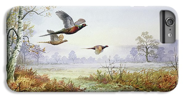 Pheasant iPhone 6 Plus Case - Pheasants In Flight  by Carl Donner