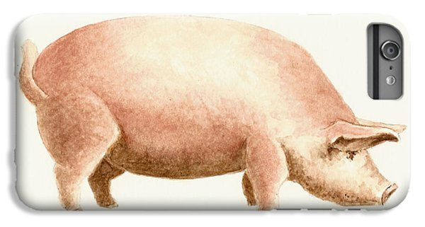 Pig IPhone 6 Plus Case by Michael Vigliotti