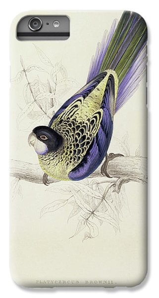 Platycercus Brownii, Or Browns Parakeet IPhone 6 Plus Case