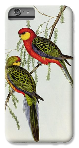Platycercus Icterotis IPhone 6 Plus Case by John Gould