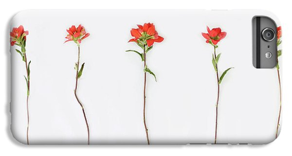 Poppy Blossoms IPhone 6 Plus Case by Brittany Bevis