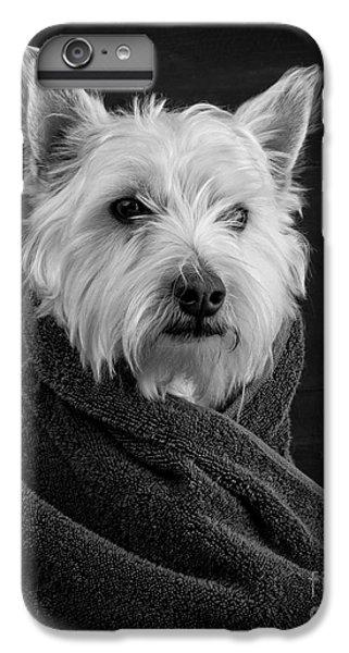 Portrait Of A Westie Dog IPhone 6 Plus Case