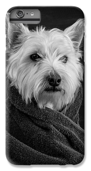 Dog iPhone 6 Plus Case - Portrait Of A Westie Dog by Edward Fielding