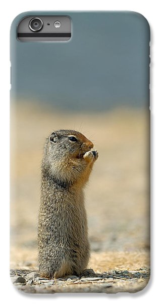 Prairie Dog IPhone 6 Plus Case by Sebastian Musial