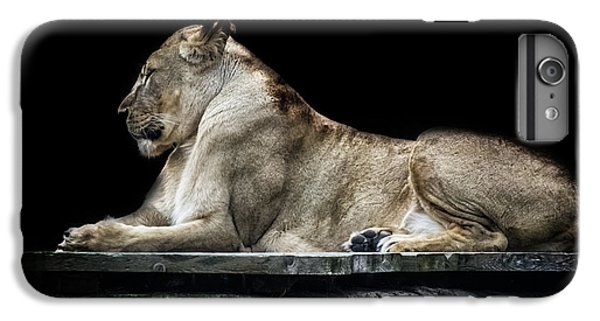 Lion Head iPhone 6 Plus Case - Proud by Martin Newman