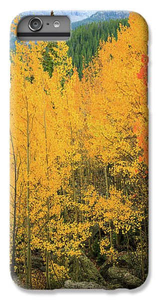 Pure Gold IPhone 6 Plus Case by David Chandler