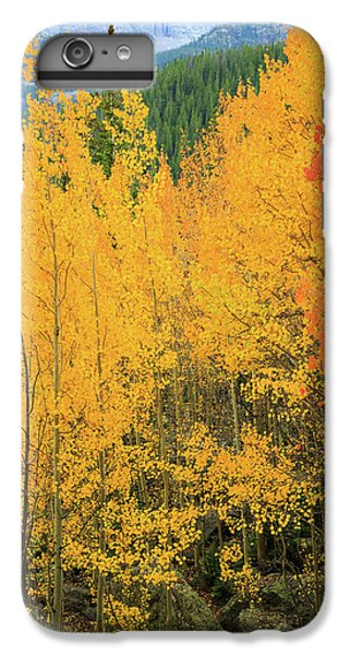 IPhone 6 Plus Case featuring the photograph Pure Gold by David Chandler