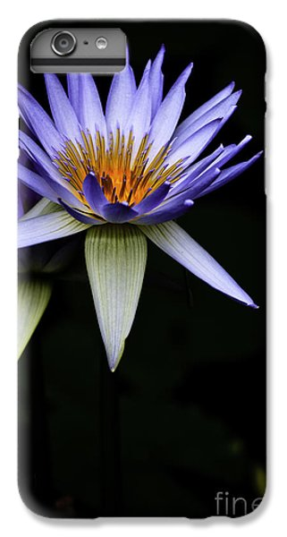 Purple Waterlily IPhone 6 Plus Case by Avalon Fine Art Photography