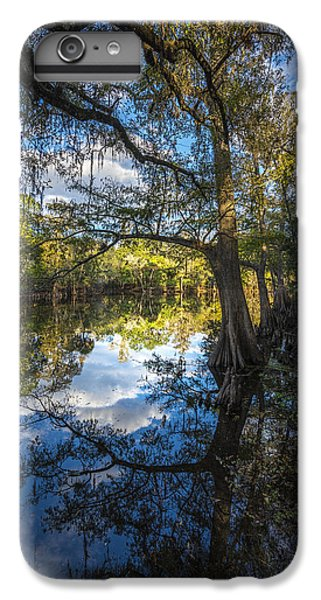 Ibis iPhone 6 Plus Case - Quiet Embrace by Marvin Spates