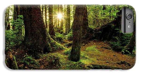 Nature Trail iPhone 6 Plus Case - Rainforest Path by Chad Dutson
