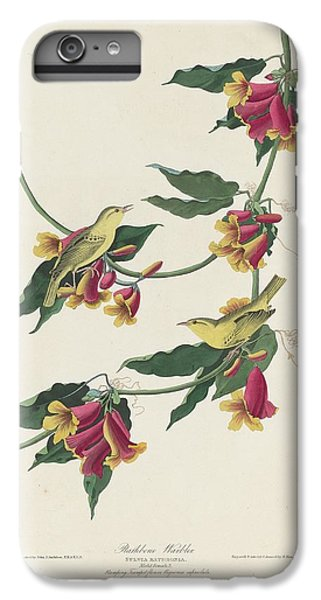 Rathbone Warbler IPhone 6 Plus Case by Rob Dreyer