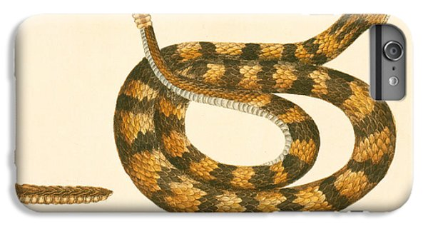 Rattlesnake IPhone 6 Plus Case by Mark Catesby